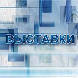 Выставки Ольховатки